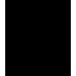 PRO S 48x28Dverová