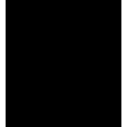 zrkadloTANJA v rámedo 1500x700